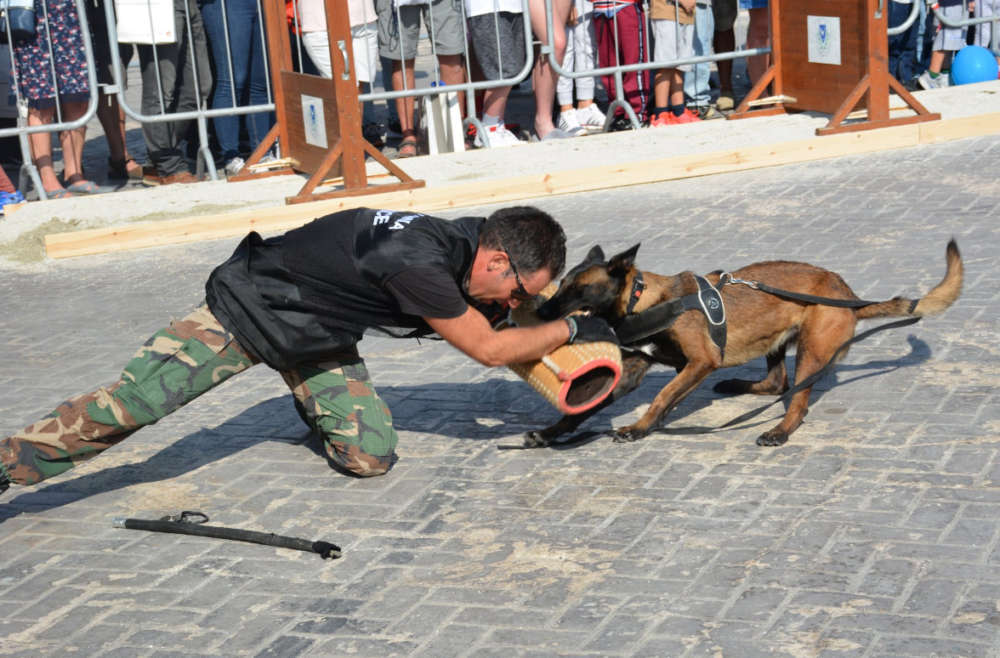 'Police day' held in Paphos for the first time (photos)
