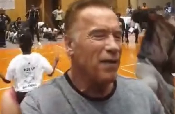 Schwarzenegger struck by flying kick at South Africa sports event (vid)