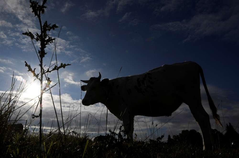 UK heatwave will hit food supplies