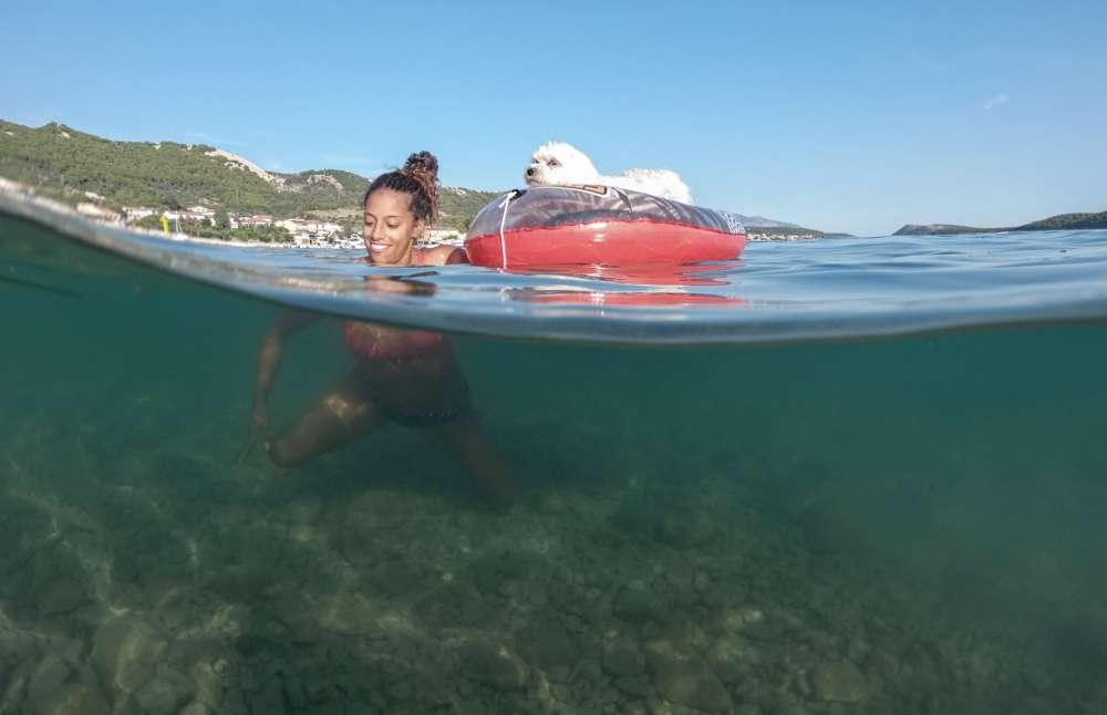 It's a dog's life at Croatian beach bar