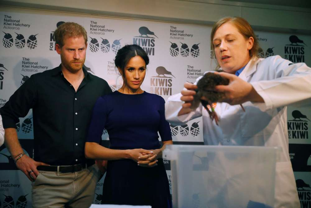 Meghan and Harry name newly hatched kiwi chicks on final day of Pacific tour