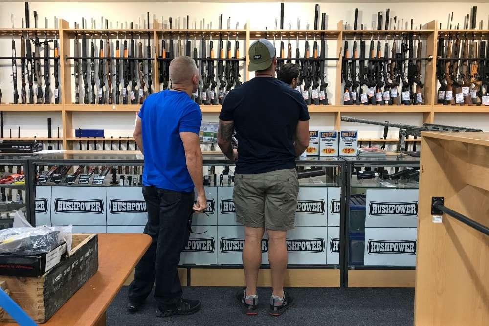 NZ plans firearm register