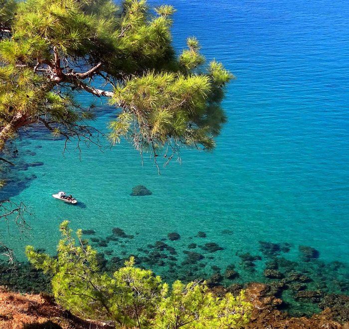 Adonis (Circular) - Pafos (Paphos) District