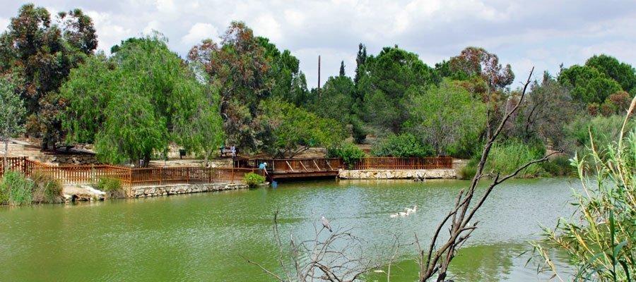 Αthalassa lake overflows (pictures)