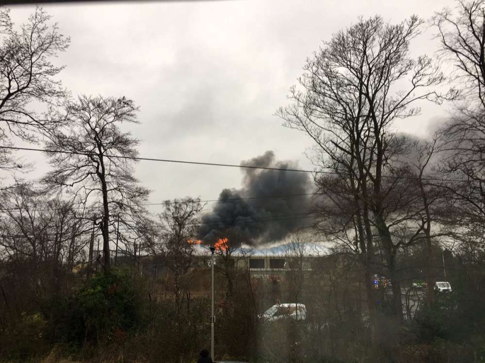 Large blaze breaks out at British zoo - animals safe