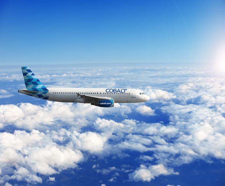 Cobalt licence revoked