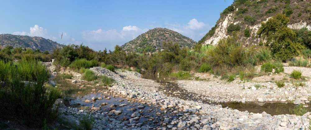 BirdLife Cyprus launch petition against Paphos-Polis highway (video)