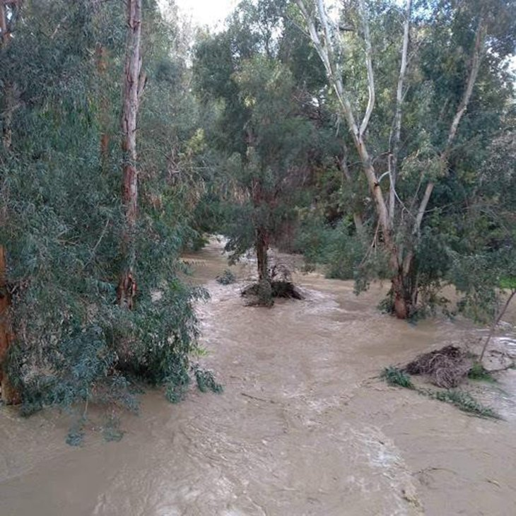 Pedieos river in Strovolos overflows after Wednesday's rainfall (pictures + videos)