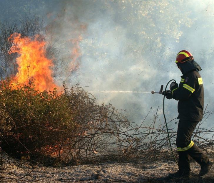 Forestry Department tackles fire near Macheras forest