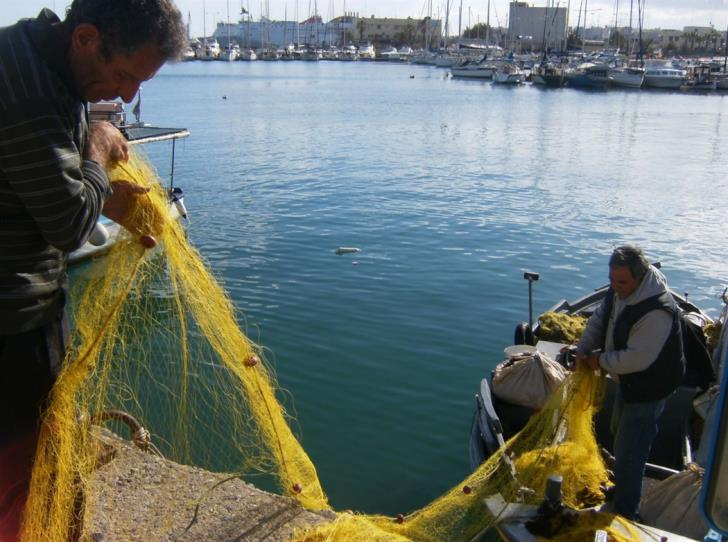 Department of Fisheries to create app for Cypriot fishermen