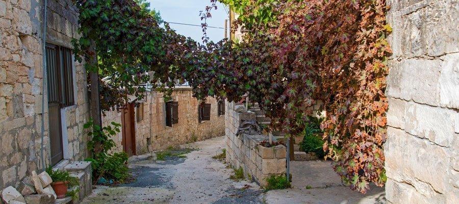 Fyti village