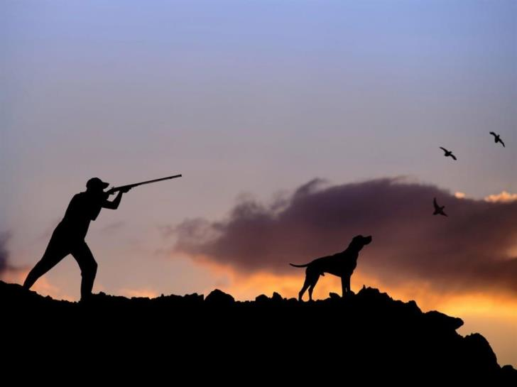 Paphos: Four hunters fined €14