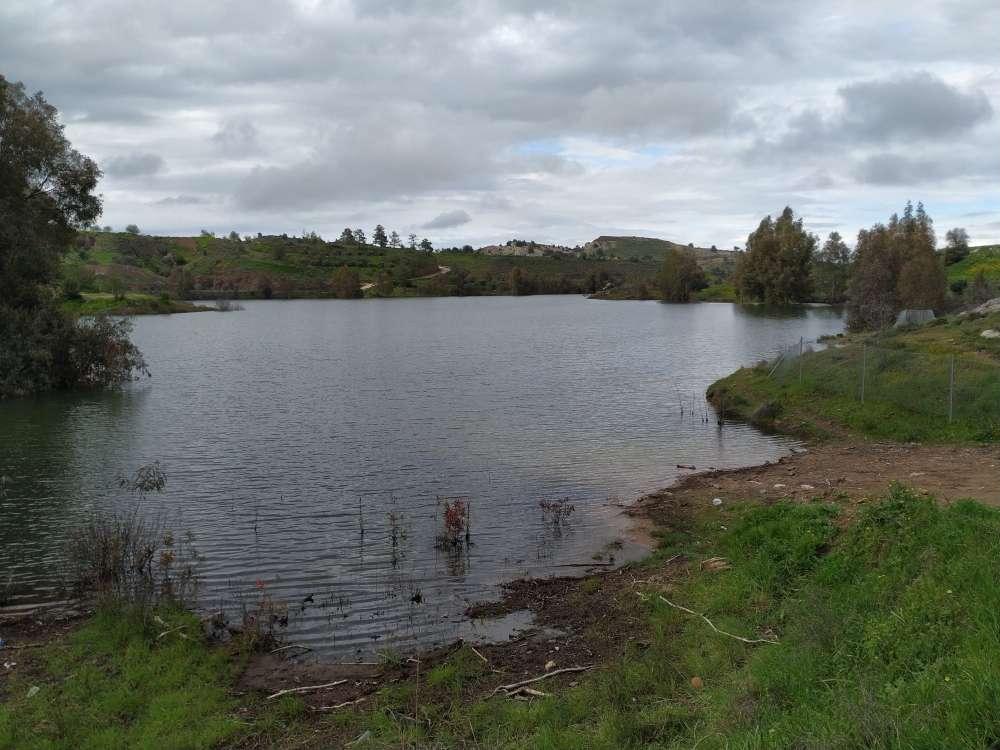 Tamassos dam in spring (pictures)
