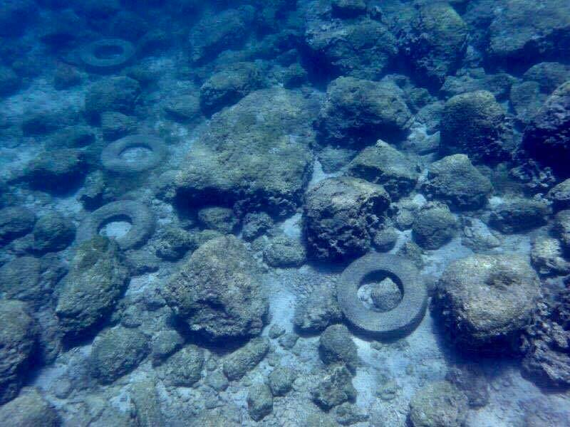 Greens clean-up Malama area seabed