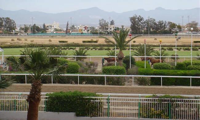 Police raids Nicosia race club