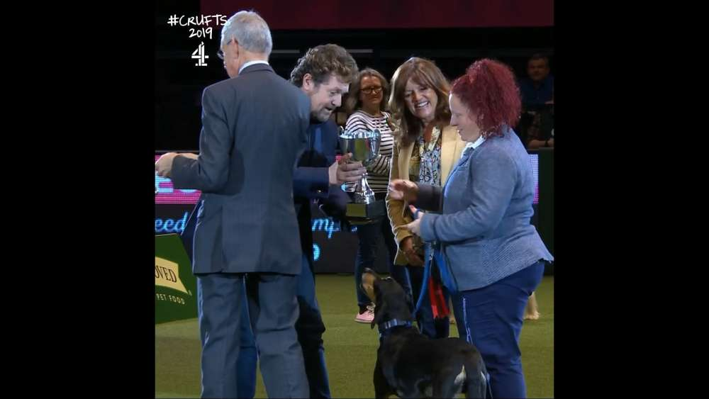Cypriot dog wins award at world's largest dog show (video)