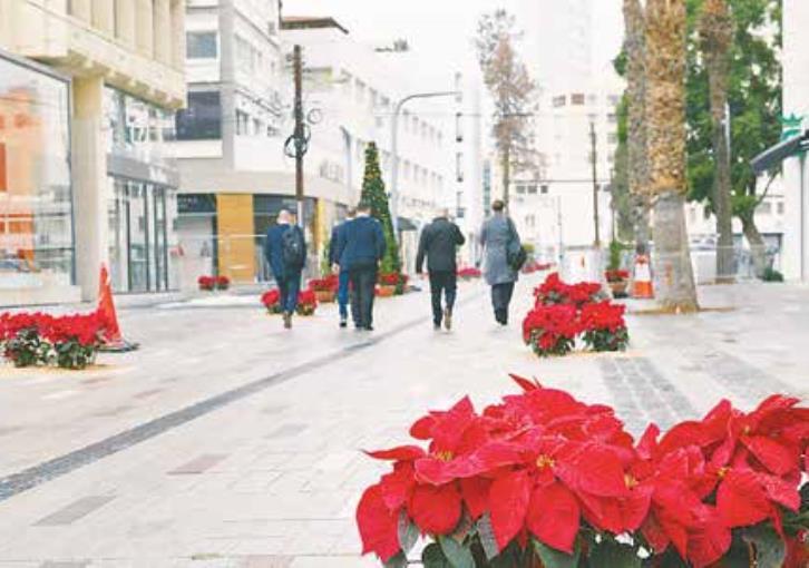 Stasikratous ready for Christmas (photos)
