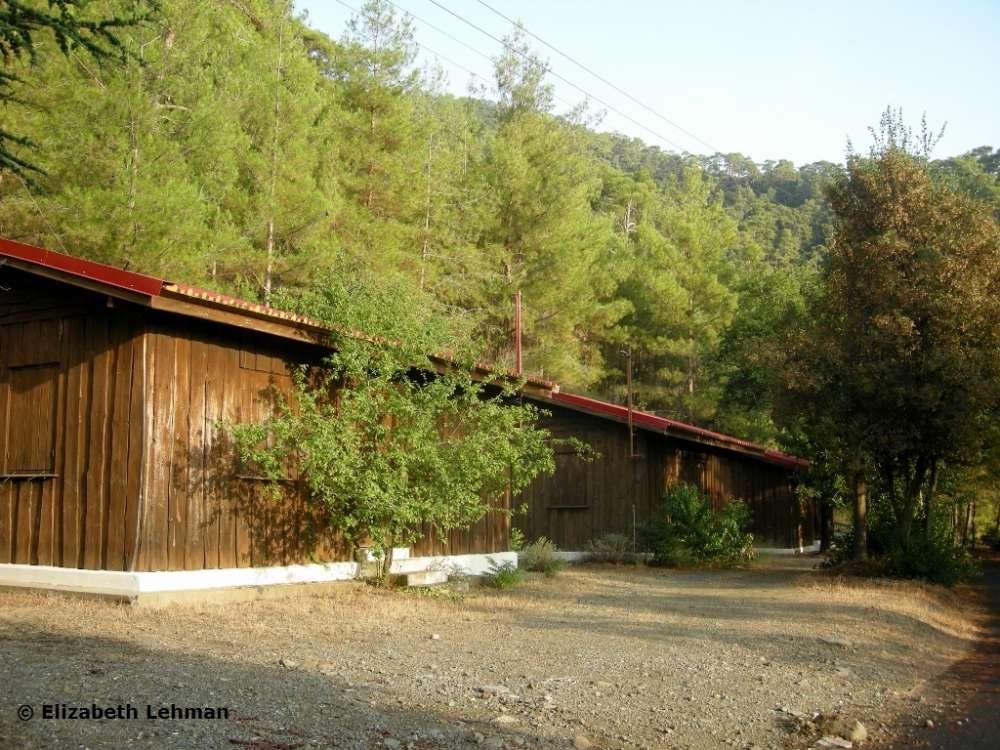 Stavros tis Psokas Picnic Site Pafos District