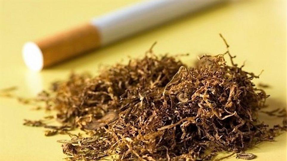 Customs seized 203 kg of tobacco