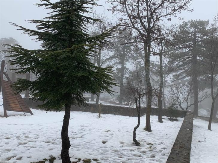 Cloudy with light showers and snowfall in mountains