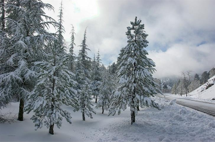 White Troodos from above (video)