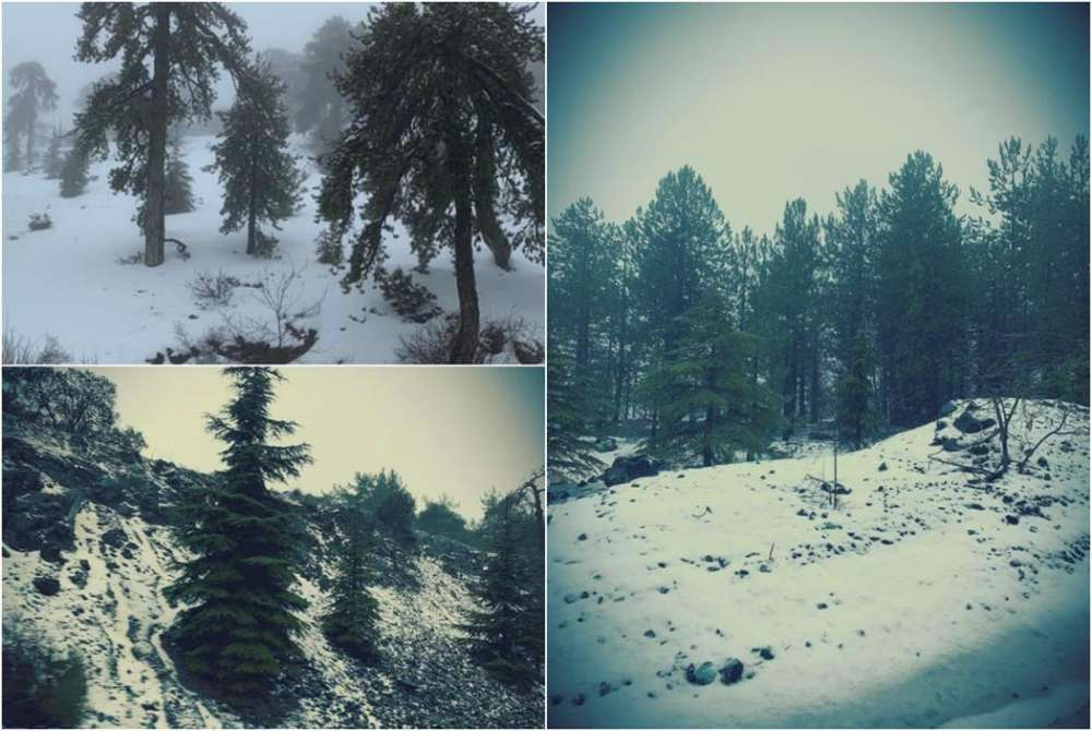 Heavy snowfall in Troodos - roads closed (pictures)