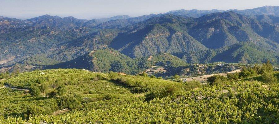 Vouni Panagias - Ambelitis Wine Route
