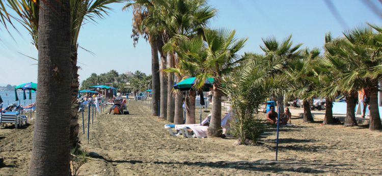A green beach experience in Larnaca
