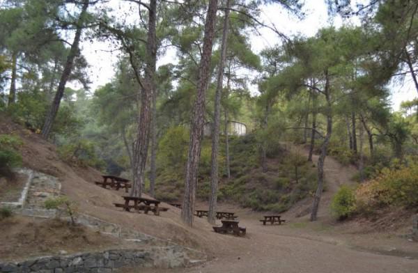 Agia Pafos Picnic Site