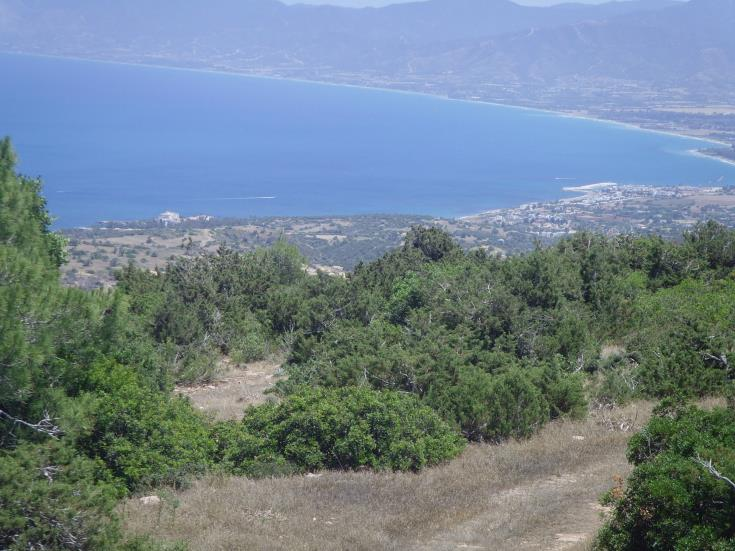 Akamas community leaders dismayed at cabinet decision