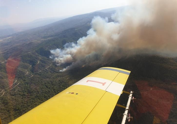 UPDATE - Fires erupt simultaneously at Akamas peninsula
