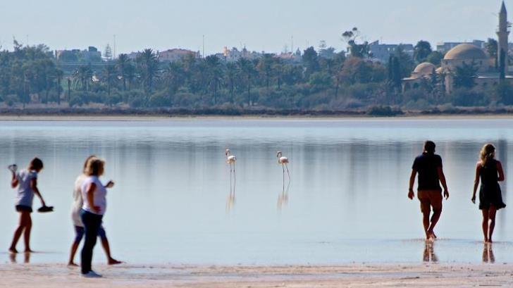 Larnaca Mayor sounds alarm over salt lake area littering