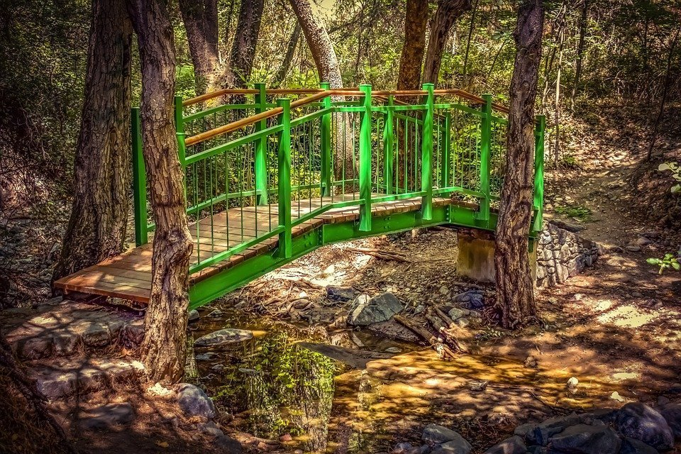 Bridge, Wooden, Creek, Trees, Scenic, Summer, Woods