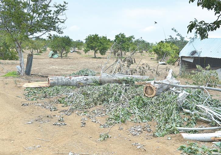 Tornado hits Klirou