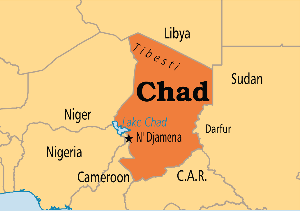 Scores of Chadian rebels held after French air strikes