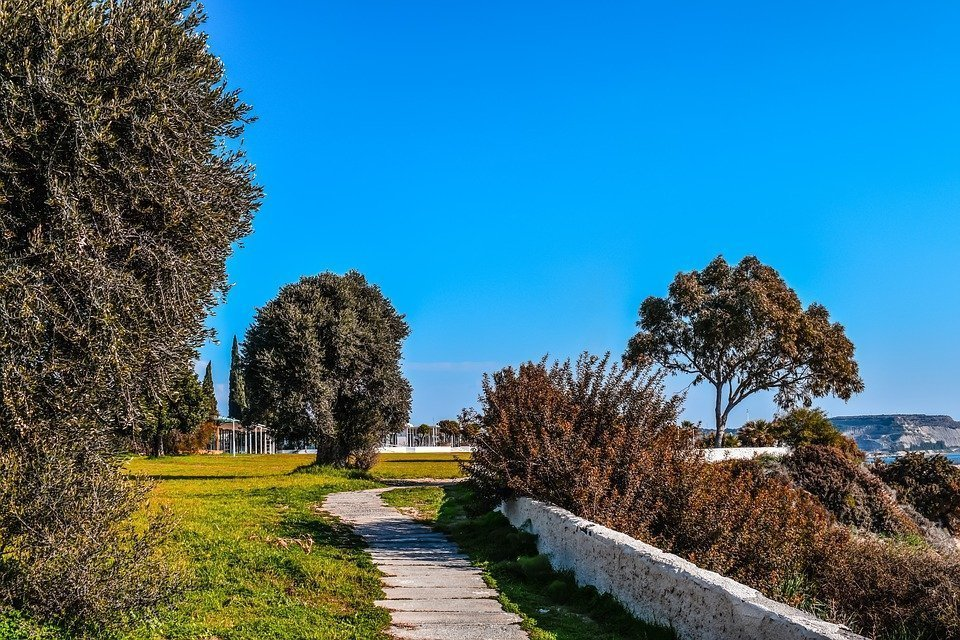 Cyprus, Governor'S Beach, Coastal Path, Scenery, Meadow