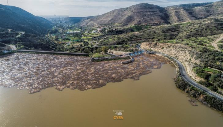 Germasogeia dam nearing overflow (pictures+video)