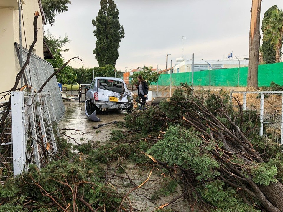 Limassol: Falling trees damage house and cars in Episkopi (photos