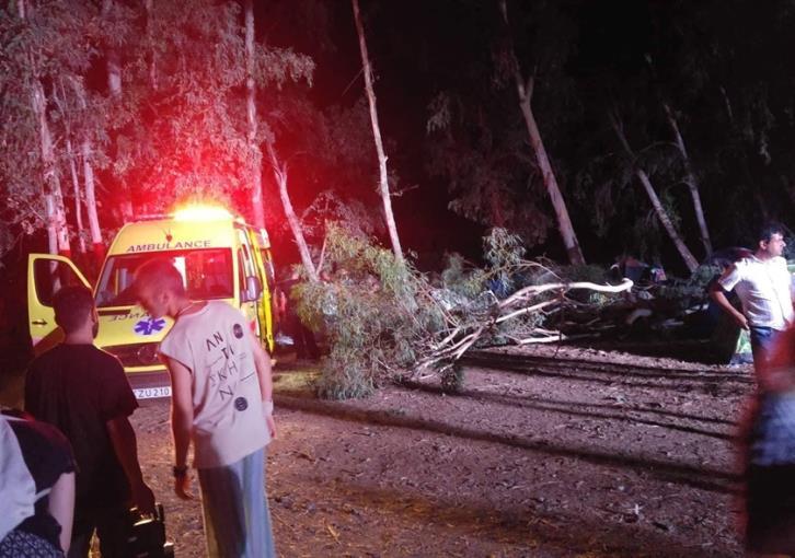 Three injured from falling tree branch at Kato Pyrgos camping site