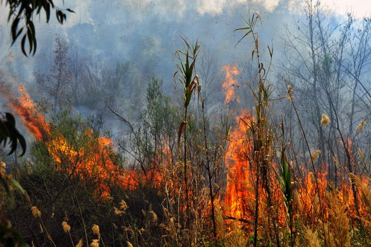 Human factor to blame for 93% of fires