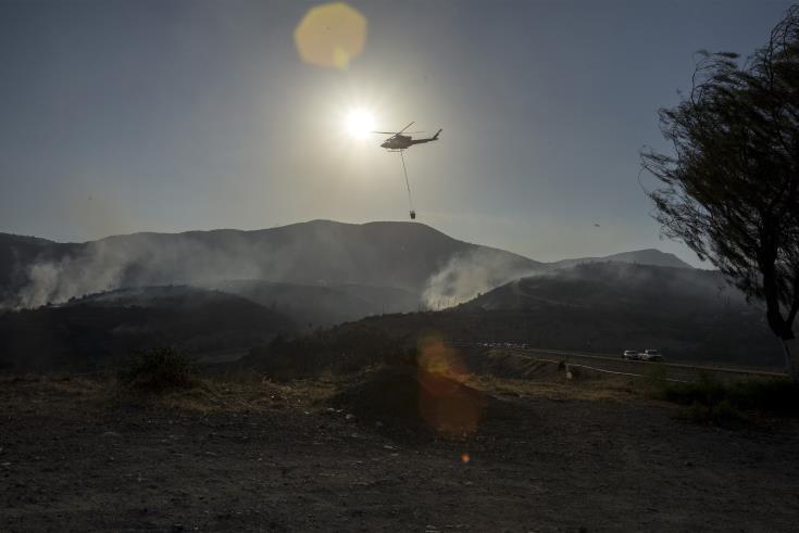 Fire near Omodhos extinguished