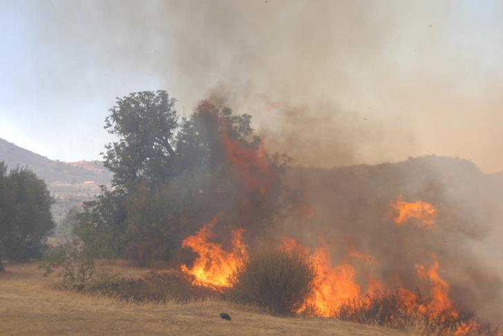 Paphos Fire Service battles out a number of fires in the district