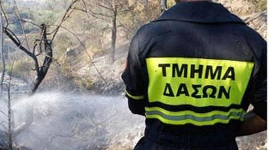 Pano Pyrgos forest fire rages; fire fighter taken to hospital