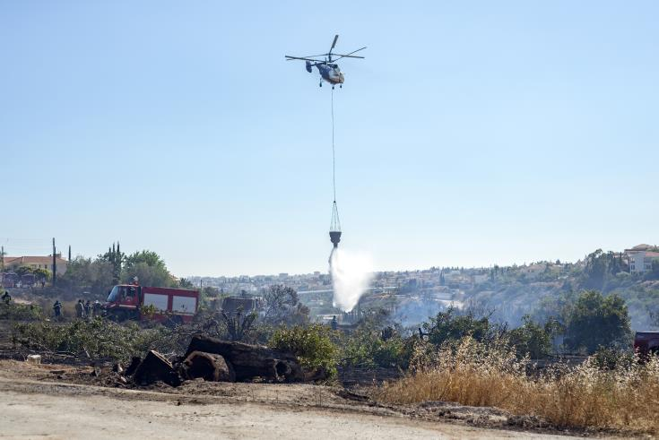 Forestry Dept: Pyrgos fire deliberate