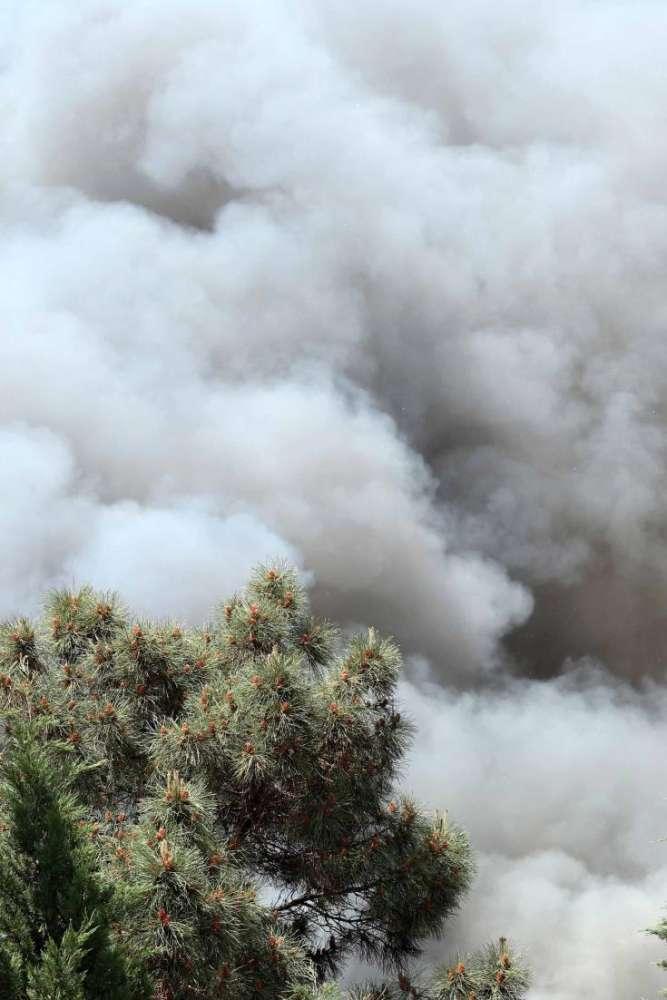 Pachna blaze under control