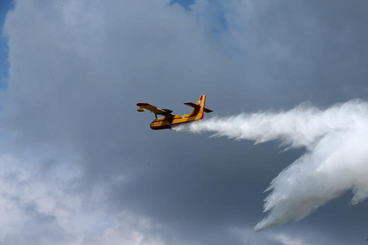 Forestry Department aircraft to help combat forest fires in Lebanon