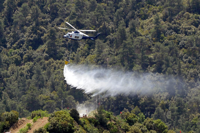 Fire fighting exercise as forest protection week gets underway (video)