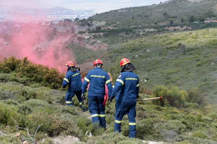 Five hectares burnt in Kathikas fire