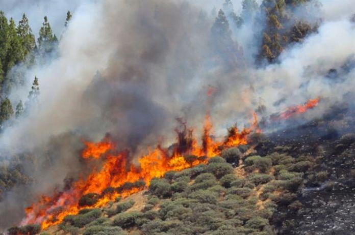 Fire services extinguish fire near Kantou
