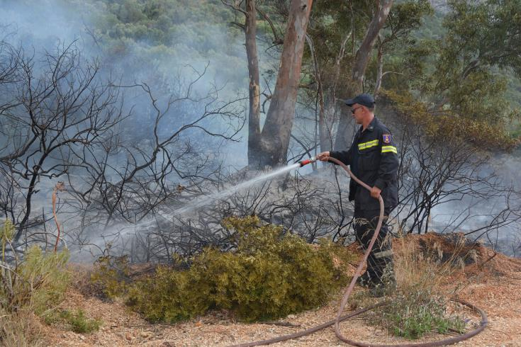Fire at Sykopetra under control